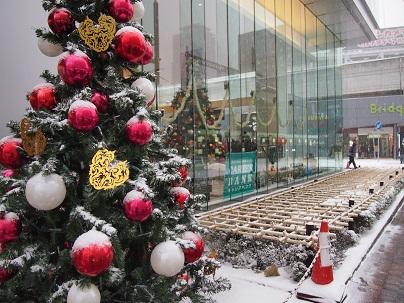 クリスマス2102.jpg