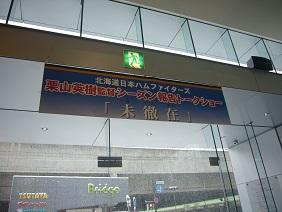 P1390868.jpg