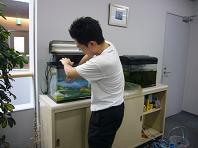 鯉となべ.JPG