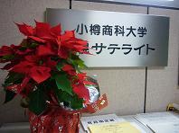サテライトクリスマス.JPG