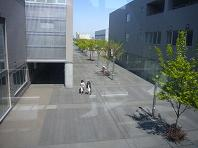 ジョブカード・東札幌.JPG
