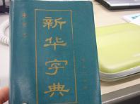 チャンリアル辞書.JPG