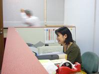 今日の工事職訓.JPG