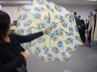 司の歴史ある傘.JPG