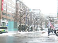 雪が積もって融けて.JPG