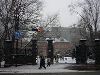 雪の道庁.JPG