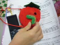 2009.5.15医療と毛虫.JPG